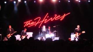 the hives - antidote.