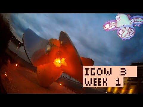 IGOW 3 - Week #1 - Orbits - Noctaro