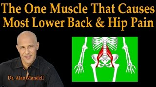 The One Muscle That Causes Most Lower Back & Hip Pain - Dr Mandell Live Stream