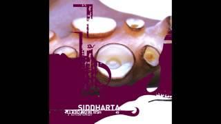 Siddharta - Orion Lady - iTurk ol skul D&D rmx (Silikon Delta, 2002)