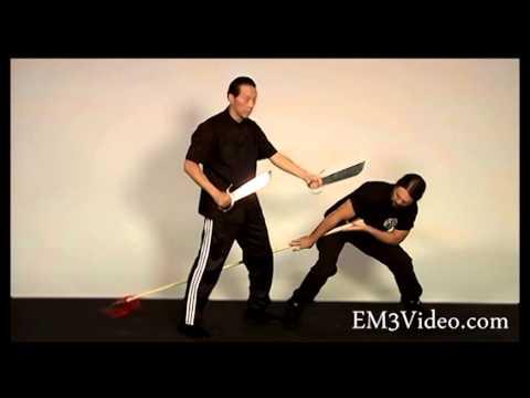 Sifu Wing Chun Swords Bart Cham Dao