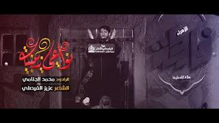 نواعي زينبيه | محمد الجنامي