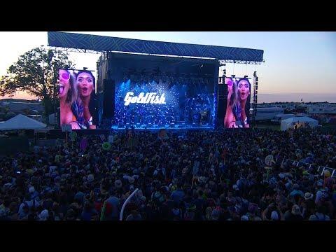 GoldFish Live at Bonnaroo (Full Set)