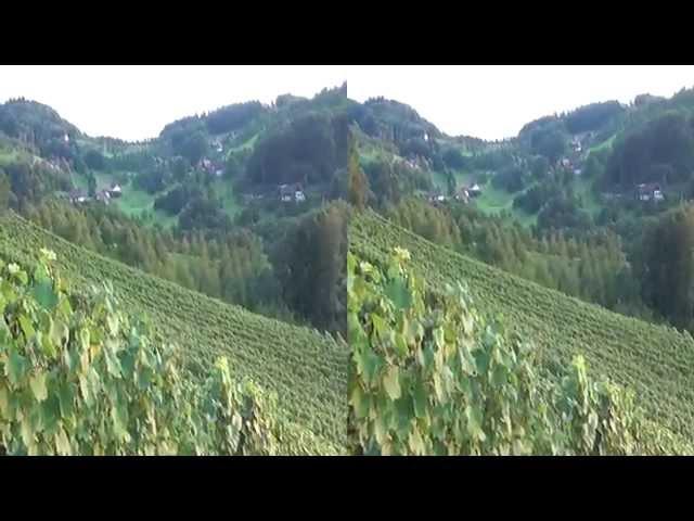 Sasbachwalden en la Selva Negra de Alemania en 3D