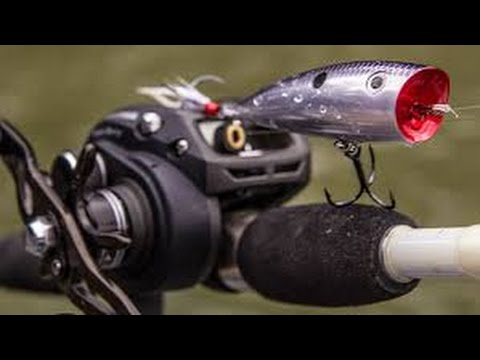 Winter TopWater Action- Strike King KVD Popper Simply Catches Fish [ToadsTips&Trips]