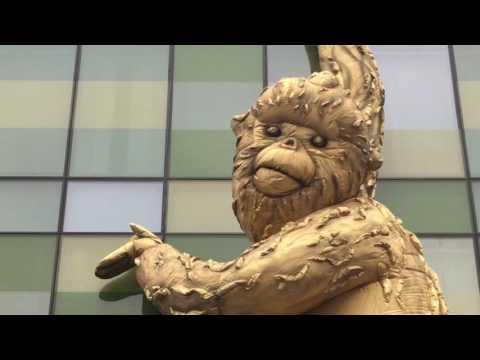 Golden (SnubNose) Monkey, The Opposite House, Beijing