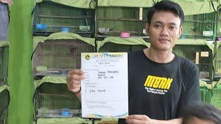 Gas Lagi Bosku Meluncur Ke Tempatnya Bos Subhan Bintaro