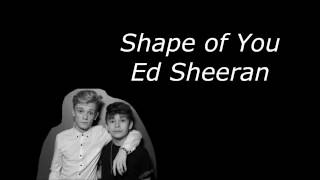 Shape of You - Ed Sheeran - Bars and Melody Cover - Lyrics