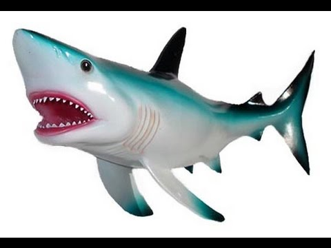 Shark toys for kids Great white Tiger Hammerhead and other shark ...
