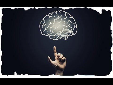 Как улучшить память и работу мозга? — Препараты и продукты