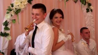 Краткий обзор Свадьбы. Свадебные песни. Живой голос. Конкурсы. Ведение. (2016)