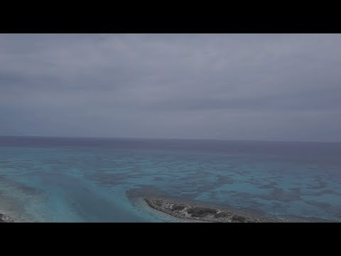 Above & Below - Bahamas 2018