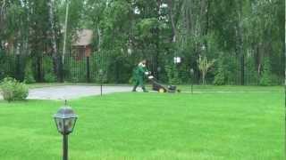 видео Устройство газонов