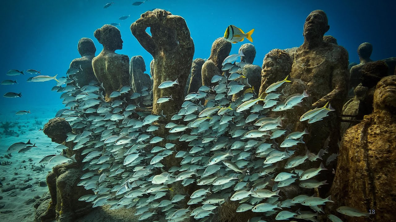 Image result for jason decaires taylor