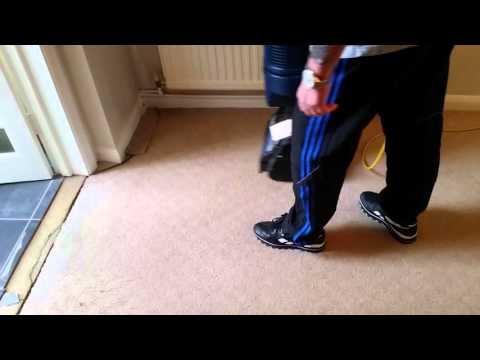 DRYcarpet cleaning