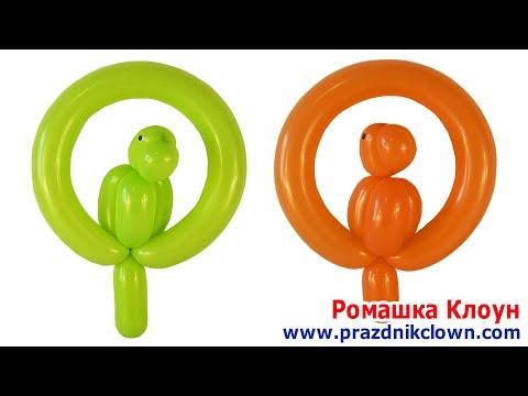 ПОПУГАЙ ИЗ ДЛИННОГО ШАРИКА ШДМ Parrot Balloon Animal TUTORIAL