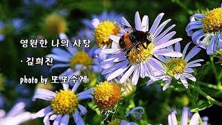 영원한 나의 사랑/김희진 & photo by 모모수계