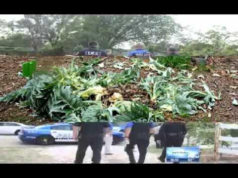 Anonymous - Texas SWAT team destroys organic farm during raid