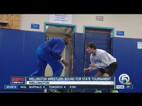 Wellington wrestlers bound for state tournament
