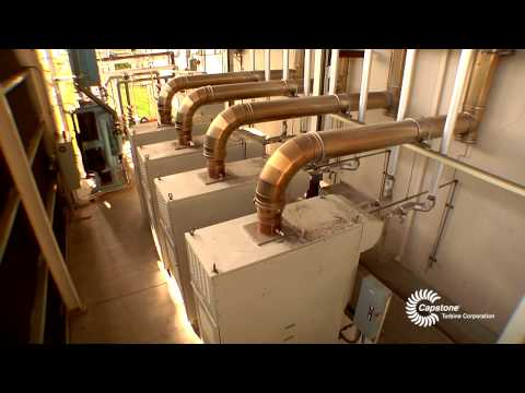 FDS Manufacturing Company's Co-Generation System- Presented by Capstone Turbine Corporation