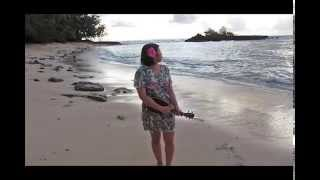 To You Sweetheart Aloha (ukulele) - Lily Bee