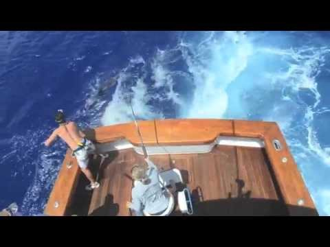 """Rameseas"" Bermuda Blue Marlin, 2011"
