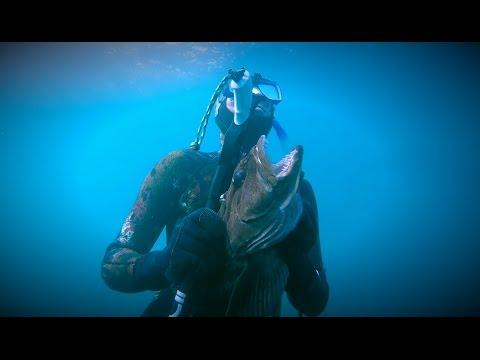 Voyage Below - Diving Big Sur