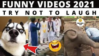 BEST OF VIRAL VIDEOS OF 2020 | VIRAL VIDEOS COMPILATION | funny videos of 2020| trending videos