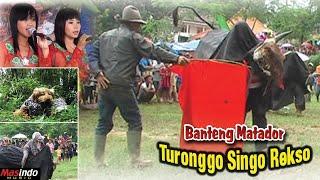 Banteng Matador - Jaranan Kepang Dor - Turonggo Singo Rekso ll Seni Kesenian dan Karawitan