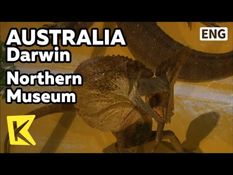 【K】Australia Travel-Darwin[호주 여행-다윈]다윈, 노던 주 박물관&갤러리/Northern Museum/Art Gallery/Cyclone Tracy