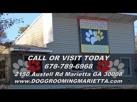 Dog Grooming Marietta | Dog Grooming Marietta | 678-789-6968 | Dog Grooming Marietta GA 30008