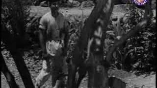Jana Tumhare Pyar Mein - Shobha Khote & Mehmood - Sasural