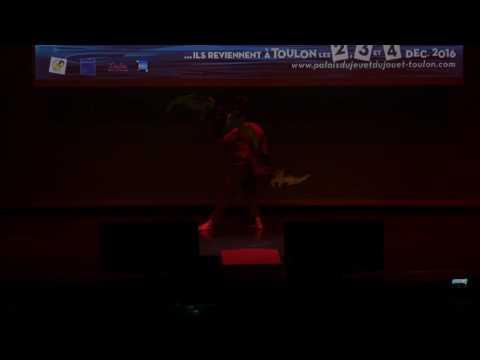 related image - Palais du Jeu et du Jouet 2016  - Toulon - Concours Cosplay - 04 - World of Warcraft - Illidan