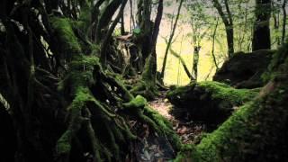 Sigur Rós - Dauðalogn [Official Music Video]