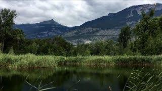 Le Valais par les lacs - Bois de Finges