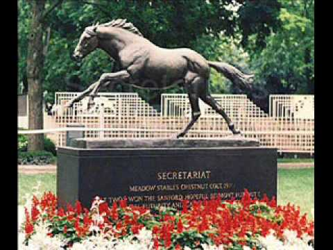 The great thoroughbred horses