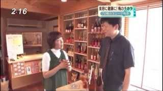 20100629 【梅酒特集】 ◇ 産地やつくり方によって変わる梅酒の魅力 & ...