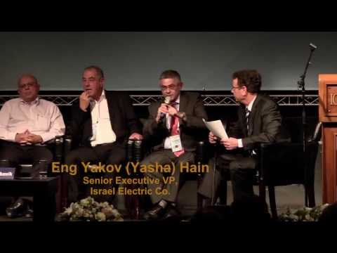 Electricity 2013 - Israel's Electricity Market (II)
