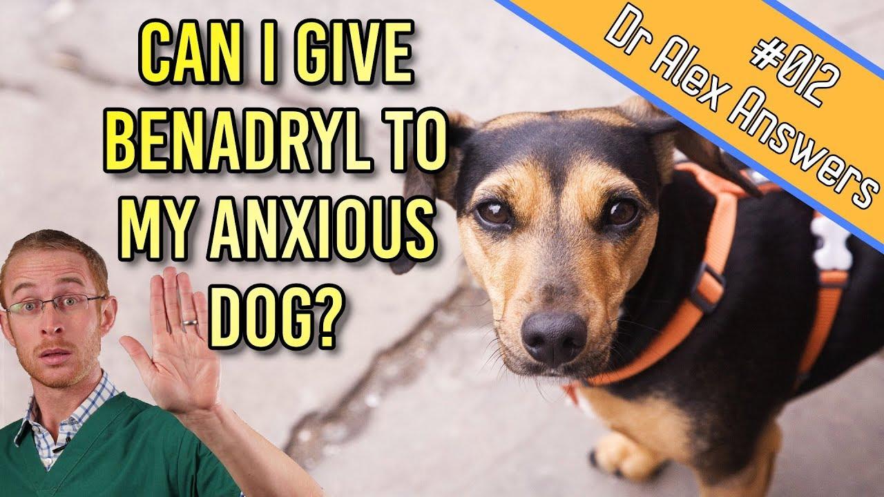 Diphenhydramine hydrochloride anxiety, benadryl anti anxiety