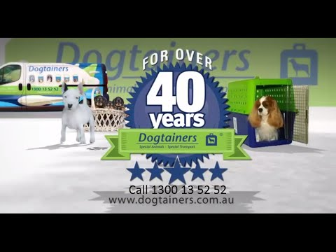 Animal Transport Video Dogtainers Pet Transport by Air (Short Version)