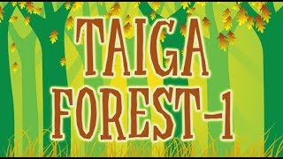 Forest | What Is Taiga Forest? | 2d Animated | Part 1