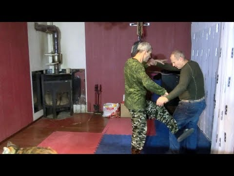 The eagle and the snake Universal martial art