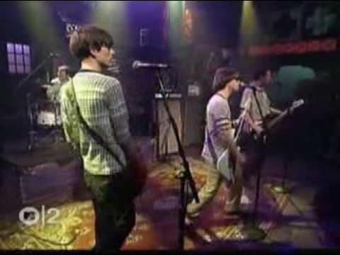 Weezer  -  Buddy Holly (live)