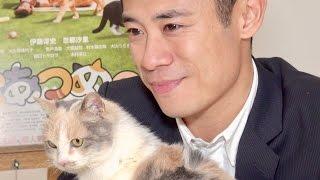 ムビコレのチャンネル登録はこちら▷▷http://goo.gl/ruQ5N7 猫の名演で奇...