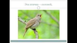 Скачать Учим стихотворение И Токмаковой Десять птичек стайка