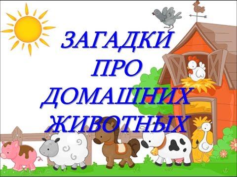 Загадки про домашних животных для детей. Загадки для детей с ответами