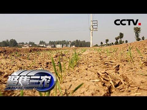 《聚焦三农》关注云南干旱(上) 20190529 | CCTV农业