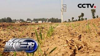 《聚焦三农》 20190529 关注云南干旱  CCTV农业