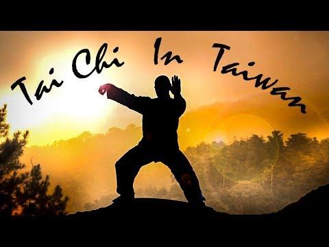 Секрет долголетия Азиатов | Tai Chi in Taiwan | Тайцзи | ЦИГУН | TAIWAN VLOG | hd 1080p | 太极拳
