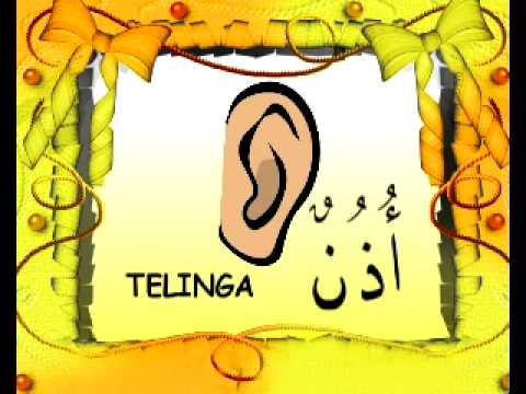 Nasyid Bahasa Arab 1